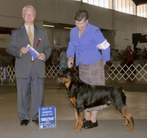 4 point Major! Trinity Kennel Club, July 2012