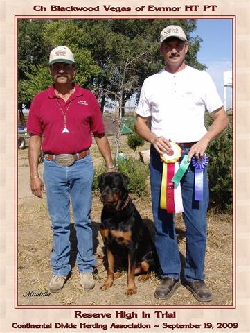 Reserve High in Herding Trial